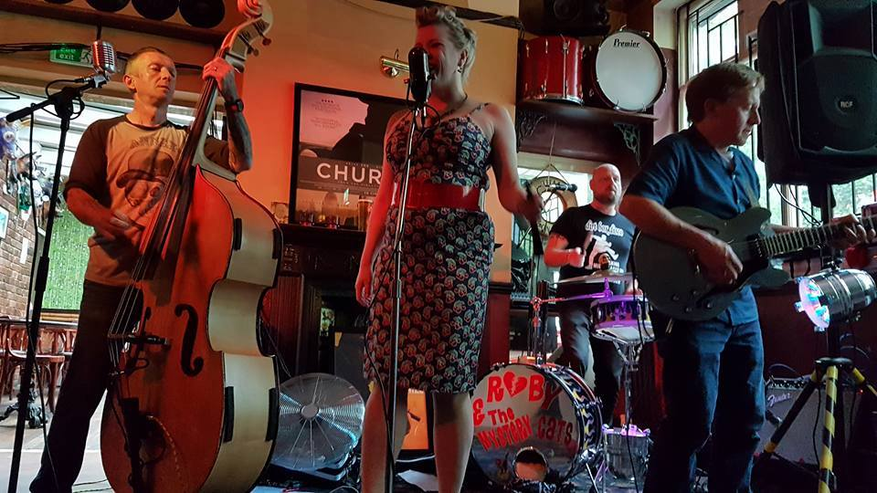 Ruby and the Mystery Cats at the Schooner